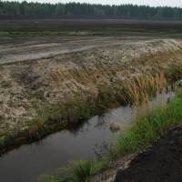 Peat bog mined to the very mineral substrate - heavily drained locality